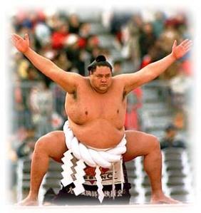 sumo-wrestler[1]